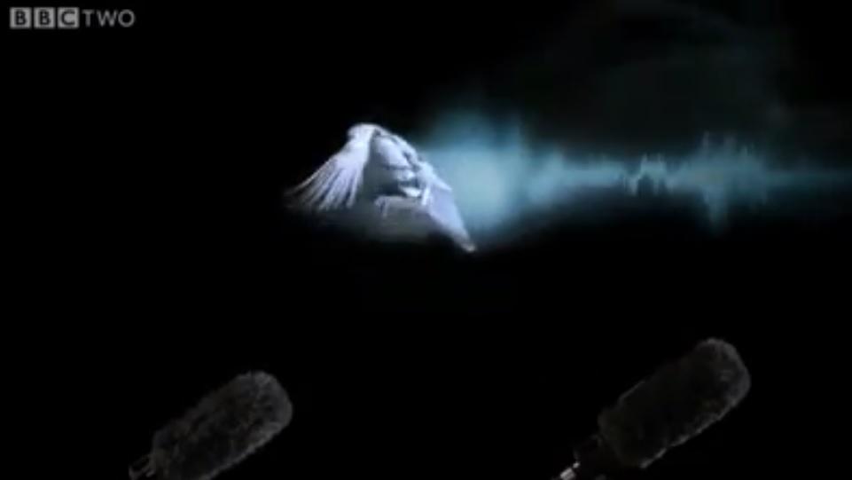 Electronic Village, His excellency mohammed ahmed khalifa al suwaidi, Arabic Poetry, Arabic Knowledge, arabic articles, astrology, science museum, art museum,goethe museum, alwaraq, arab poet, arabic poems, Arabic Books,Arabic Quiz, القرية الإلكترونية  , محمد أحمد خليفة السويدي  , محمد أحمد  السويدي ,  محمد    السويدي ,  محمد  سويدي , mohammed al suwaidi, mohammed al sowaidi,mohammed suwaidi, mohammed sowaidi, mohammad alsuwaidi, mohammad alsowaidi, mohammed ahmed alsuwaidi, محمد السويدي , محمد أحمد  السويدي , muhammed alsuwaidi,muhammed suwaidi